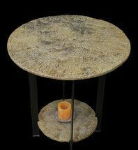 Fossilized Pennsylvanian Microbial Mat Table - Oklahoma For Sale, #39092