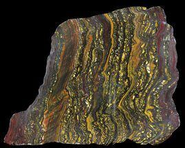 Tiger Iron Stromatolite - Fossils For Sale - #39177