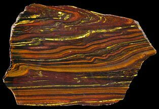 "7.1"" Polished Tiger Iron Stromatolite - (2.7 Billion Years) For Sale, #39194"