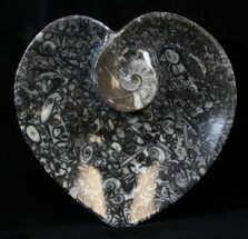 "Buy 4.5"" Heart Shaped Fossil Goniatite Dish - #39310"
