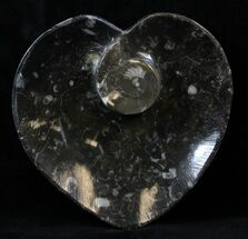 "4.5"" Heart Shaped Fossil Goniatite Dish For Sale, #39317"