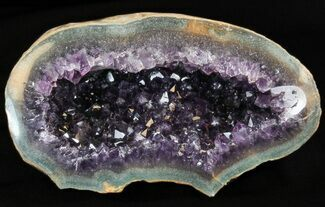 "Buy 6.4"" Dark Purple Amethyst Geode - Uruguay - #40597"