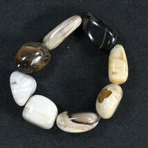 Buy Polished Oregon Petrified Wood Bracelet - #40804