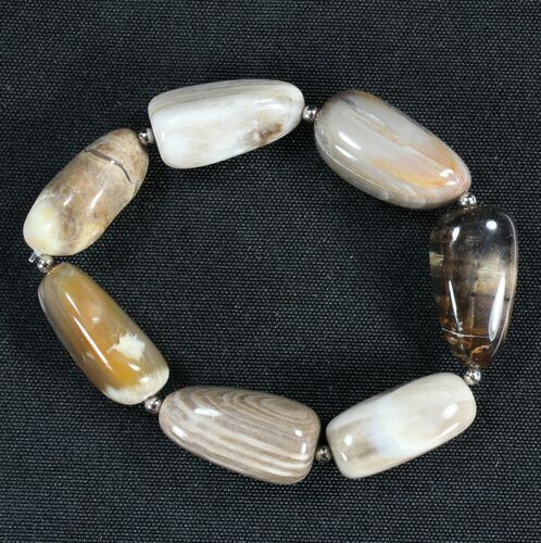 Polished Oregon Petrified Wood Bracelet