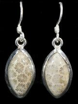Buy Beautiful Fossil Coral Sunburst Earrings - Sterling Silver  - #41212