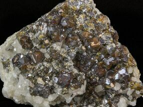 Sphalerite, Quartz, Calcite & Chalcopyrite - Fossils For Sale - #41769