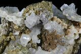 "5.0"" Blue Barite, Quartz, Pyrite and Chalcopyrite - Morocco - #42220-1"