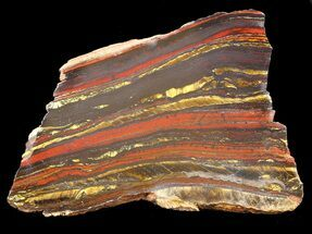 "4.6"" Polished Tiger Iron Stromatolite - (2.7 Billion Years) For Sale, #42620"