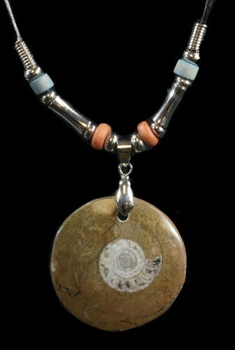 Polished Goniatite Fossil Necklace