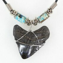 "1.3"" Polished Megalodon Tooth Necklace For Sale, #43175"