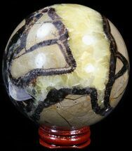 Septarian - Fossils For Sale - #43848