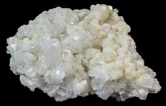 "Buy 4.2"" Apophyllite Crystals on Prehnite with Gyrolite - India  - #44362"