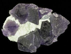 Fluorite - Fossils For Sale - #45336