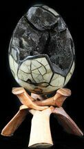 "7.8"" Septarian ""Dragon Egg"" Geode - Black Crystals For Sale, #48005"