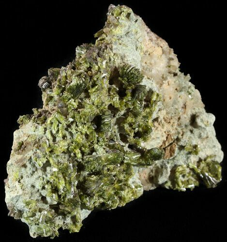 "2.5"" Lustrous, Epidote Crystal Cluster - Morocco"