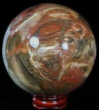 "Buy 3.6"" Colorful Petrified Wood Sphere - #49768"