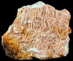 Barite & Galena - Fossils For Sale - #51474
