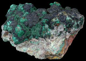 Malachite - Fossils For Sale - #57054