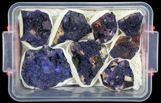 Buy Vibrant Azurite From Morocco Wholesale Lot - 8 Specimens - #60049