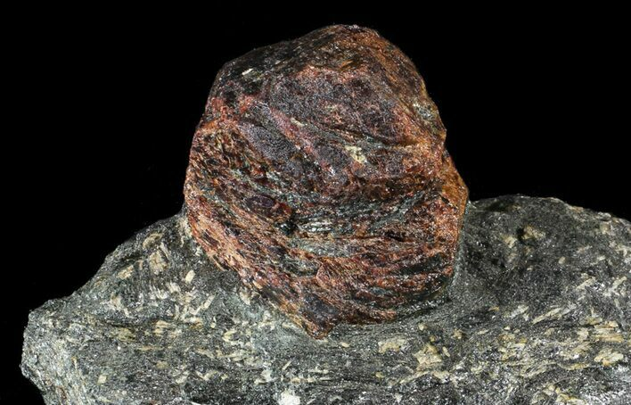 "Huge, 1.9"" Almandine Garnet In Rock - Broken Hill, Australia"