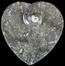 "4.5"" Heart Shaped Fossil Goniatite Dish For Sale, #61259"