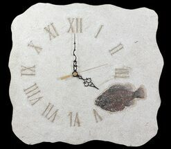 "15"" Tall Clock With Cockerellites Fish Fossil - Wyoming For Sale, #64199"