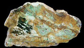 "7.4"" Opalised Serpentine Slab - Western Australia For Sale, #64883"