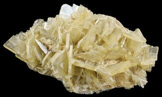 Barite - Fossils For Sale - #64137