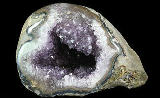 "Buy 9"" Purple Amethyst Geode - Uruguay - #66712"
