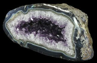 "12"" Purple Amethyst Geode - Uruguay For Sale, #66713"