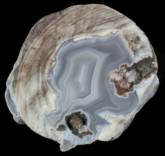 "Bargain, 2.7"" Dugway Geode (Polished Half)"