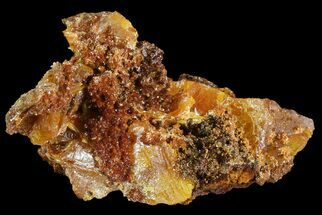 "1.4"" Wulfenite Crystals on Matrix - Mexico For Sale, #67706"