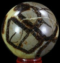 "2.5"" Polished Septarian Sphere - Madagascar For Sale, #67844"