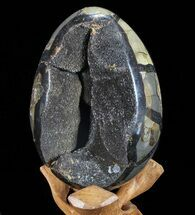 "Buy 6.1"" Septarian ""Dragon Egg"" Geode - Black Crystals - #72070"