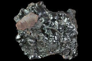 "3.1"" Kidney Ore (Botryoidal Hematite) - Morocco For Sale, #73091"