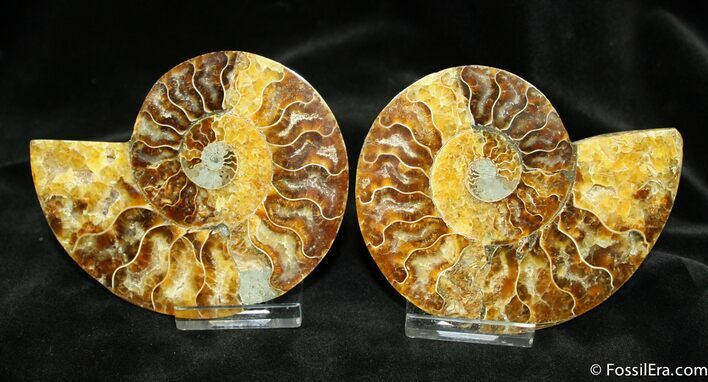 4 Inch Wide Split Ammonite Pair From Madagascar