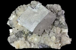 "1.8"" Galena, Dolomite and Calcite - Missouri For Sale, #73847"