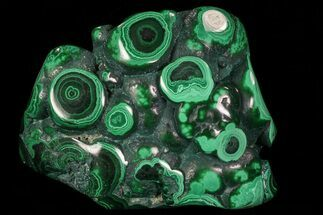 "3.8"" Polished Malachite - Congo For Sale, #76133"