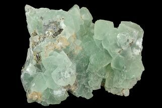 "4"" Wide Plate Of Green Fluorite Crystals For Sale, #76541"