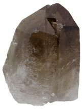 Quartz var Smoky - Fossils For Sale - #61443