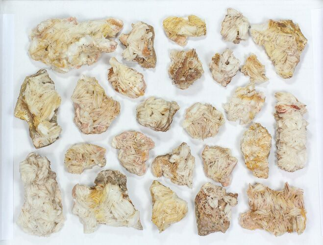 Wholesale Lot: Pink Blade Barite With Vanadinite - 25 Pieces