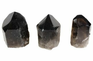 "Buy Wholesale Lot: 2-4"" Cut base Smoky Quartz Crystals - ~70 Points - #77827"