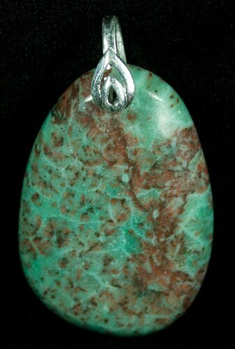 Blue Fossil Coral Pendant - 20 Million Years Old
