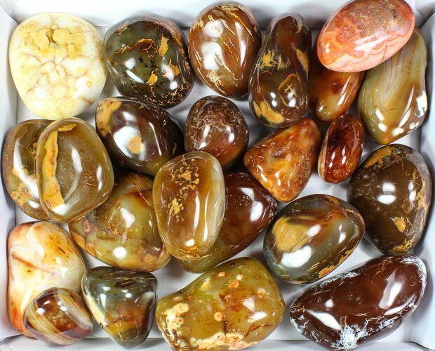 Wholesale Lot: 25 Lbs Polished Carnelian Agate - 23 Pieces