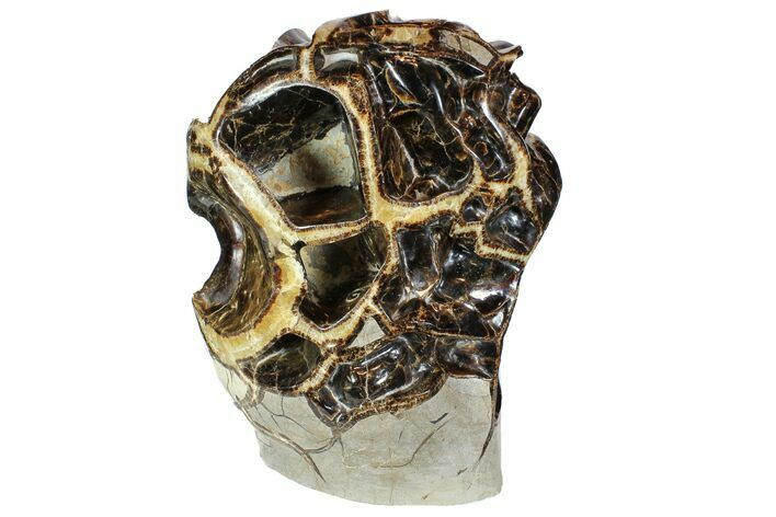 "15"" Polished Septarian ""Spiderweb"" Sculpture - Awesome Display"