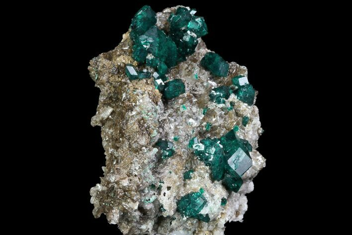 "2.3"" Large, Gemmy Dioptase Crystals On Calcite - Kazakhstan"