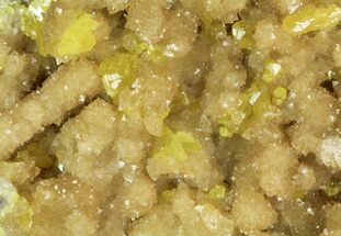 "2.85"" Sparkling Sulfur On Matrix Of Calcite Crystals - Poland For Sale, #79235"