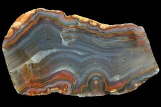 "Buy 4.5"" Polished Condor Agate Slab - Argentina  - #79459"