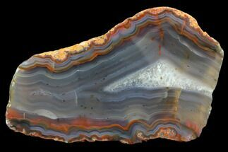 Quartz var. Agate - Fossils For Sale - #79479