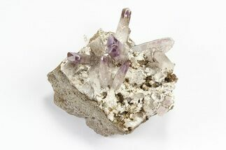 Quartz var. Amethyst - Fossils For Sale - #80628